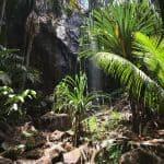 Praslin Waterfall