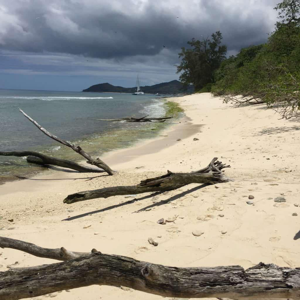 Cousin Island - Beach Paradise