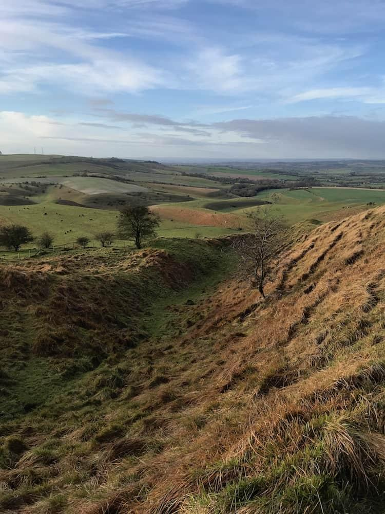 View from Cherhill Downs Nature Reserve