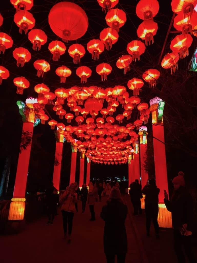 Giant Lanterns of China at Edinburgh Zoo - Walkway