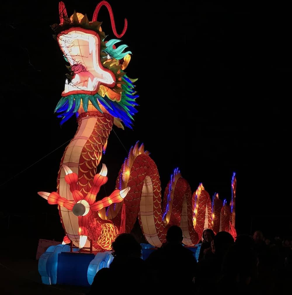 Giant Lanterns of China at Edinburgh Zoo - Dragon!