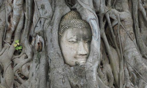 Ayutthaya Day Trip - Wat Maha That