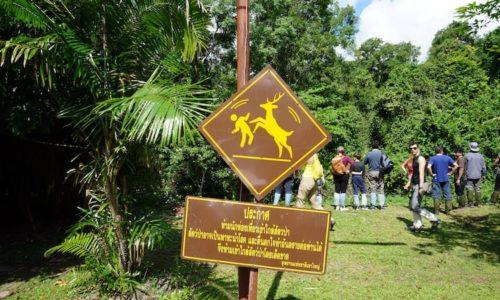 Funny signs Thailand, Deer