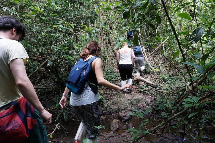 Khao Yai Trekking with Greenleaf Guesthouse