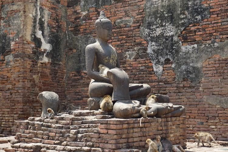Monkeys on Buddha at Lopburi