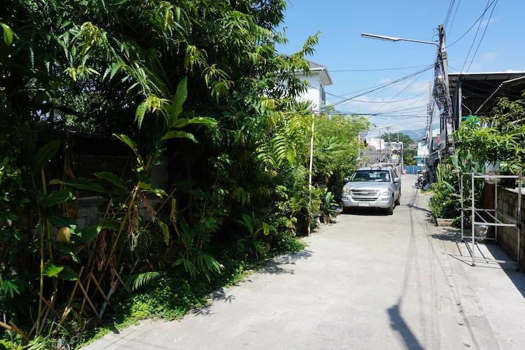 A lush green side street of Chiang Mai. A car is parked, but the wall is overrun with plants.
