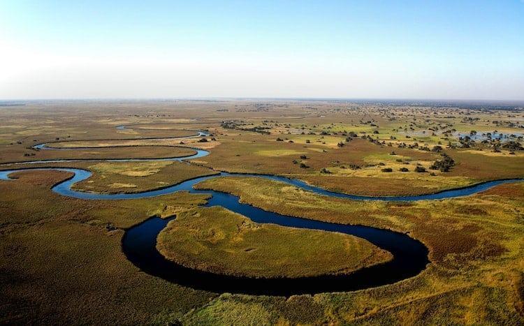 Where To Go On Safari In Africa   Botswana