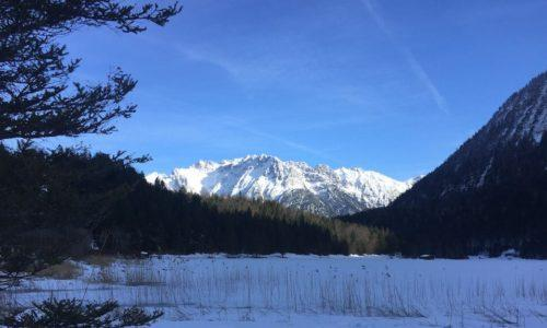 A snowy view in the Bavarian Alps