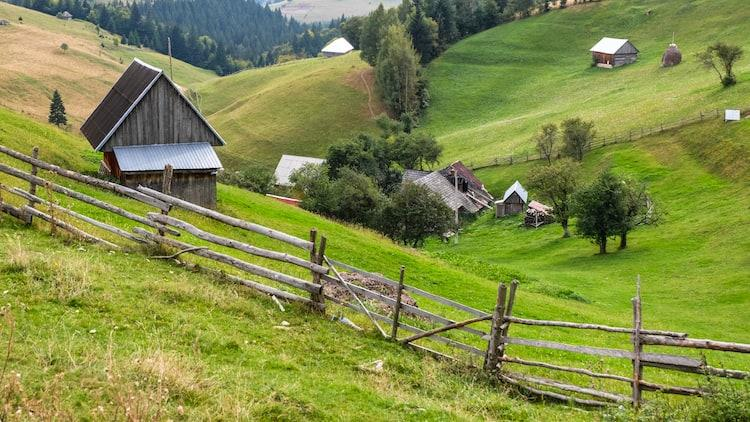 One month sabbatical ideas - Farming in Romania