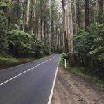 Black Spur Drive, Victoria, Australia
