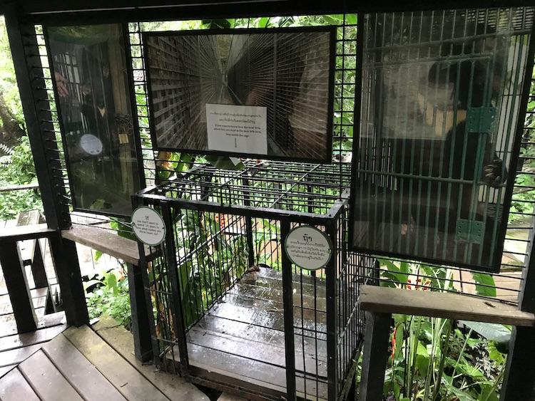 An image of small cages which bears are kept in for up to 10 years for bile farming,