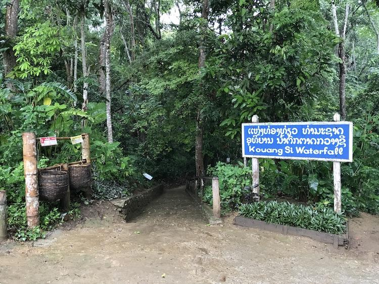 The entrance of Kuang Si Falls, with a blue sign leading to a narrow pathway into the lush green forest.