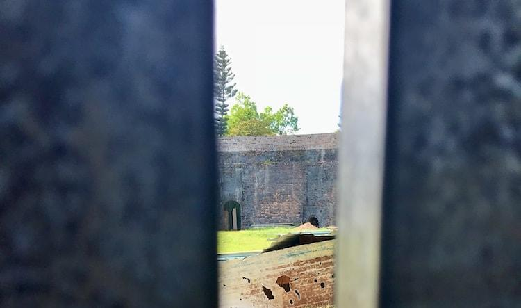 An image taken through a gate showing a dark wall in the distance with a tiger cage built in to the wall