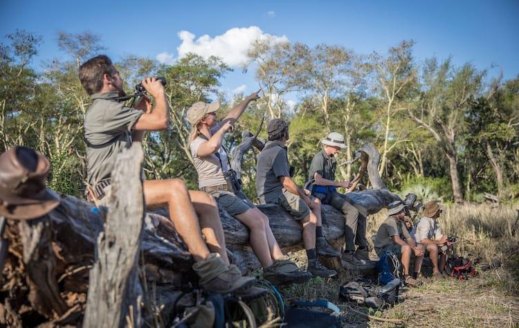 Field Guide Course Botswana