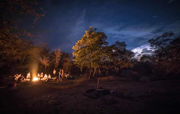 Night Time On A Safari Guide Course