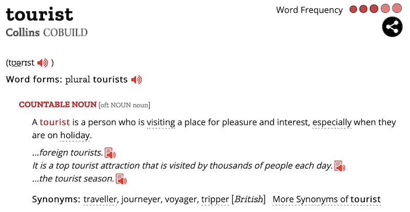 tourist definition