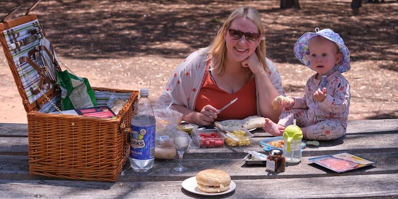 picnic at serendip sanctuary