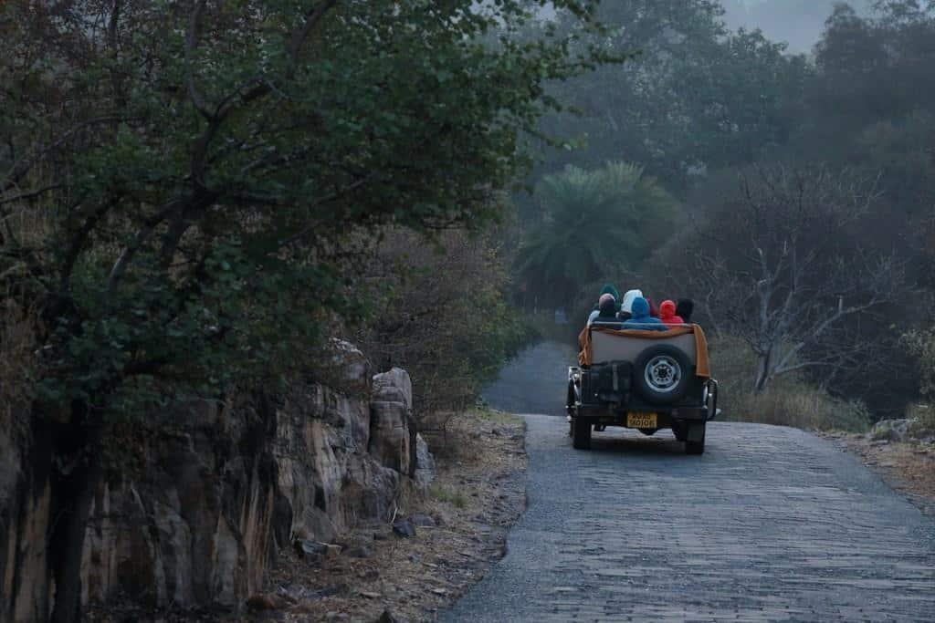 best safari locations in india ranthambore national park