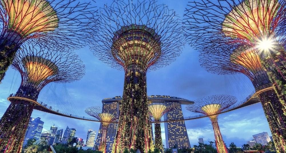 gardens by the bay singapore on a layover